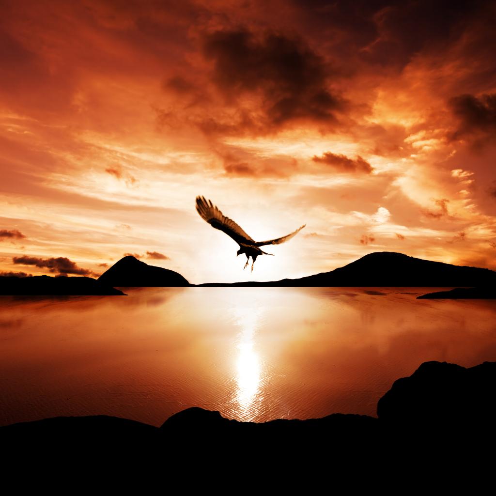 雄鹰的象征意义