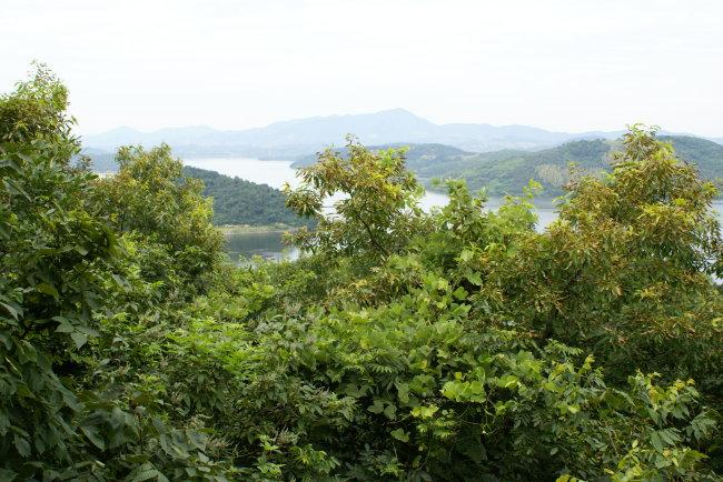 翠林二里社区风景