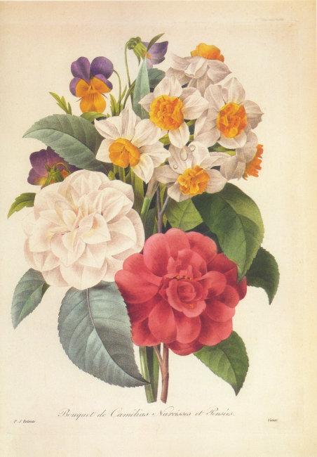 首页 最新素材 装饰素材 油画 油画 花卉 装饰画