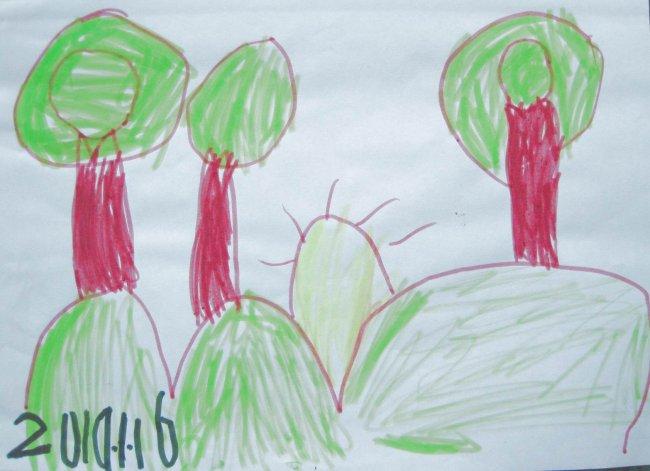 儿童随手涂鸦插画——森林中的日出