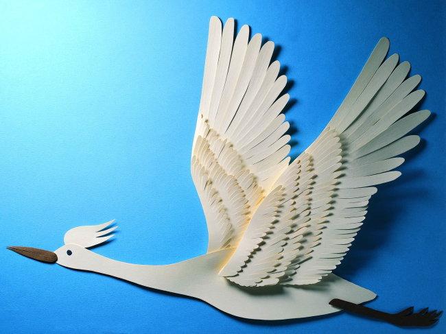 精美剪纸 艺术剪纸 剪纸天鹅 剪纸图案 剪纸艺术