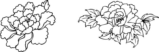 牡丹花花简笔画中国国花牡丹简笔画牡丹简笔画图片