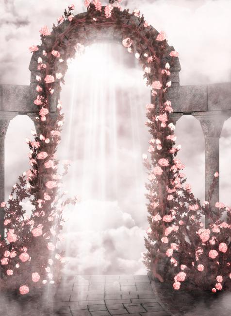唯美婚纱浪漫影楼背景模板7