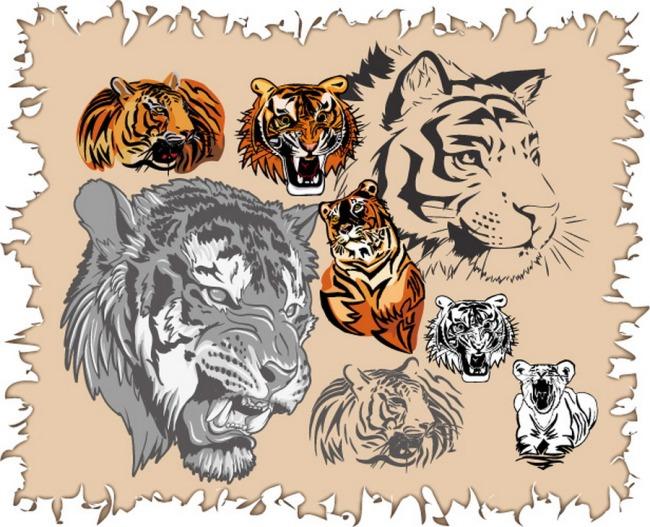 各种虎头 男装印花 男装图案 印花 服装印花 服饰图案 服装图案 动物