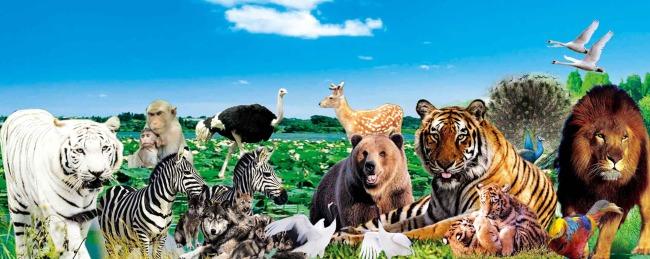 动物园门头