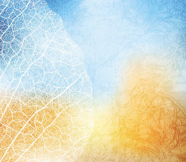 叶脉树叶背景素材