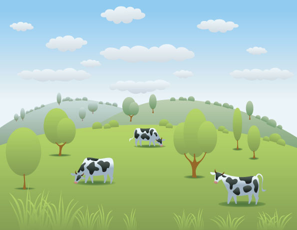 郊外牧场的奶牛