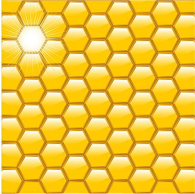 梦见蜜蜂窝_昆虫蜜蜂窝