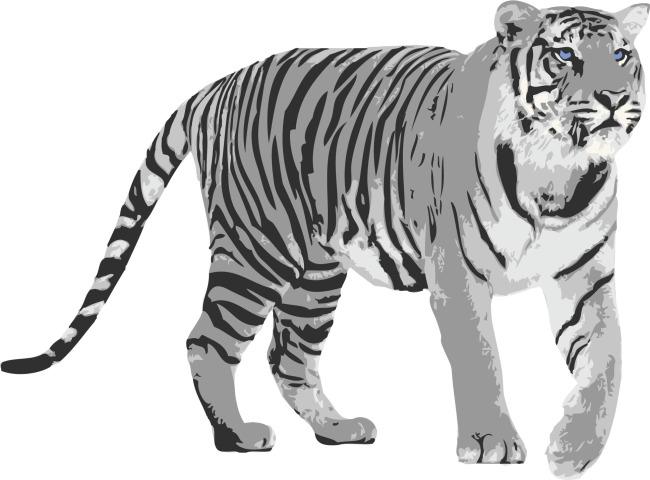 矢量素材老虎手绘花纹背景