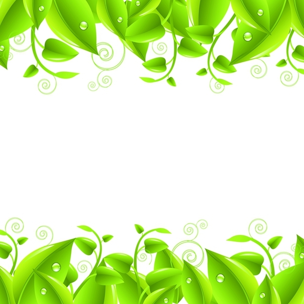 矢量绿叶植物边框素材