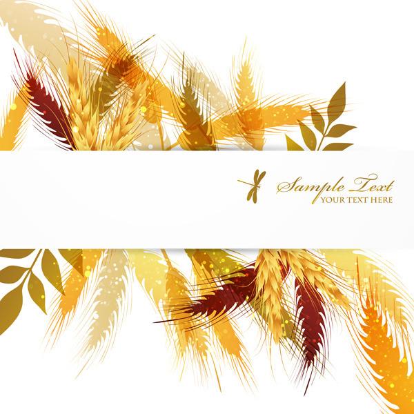 矢量秋季小麦背景边框素材
