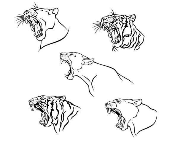 动物头像线稿