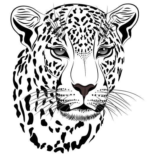 豹子头像素材