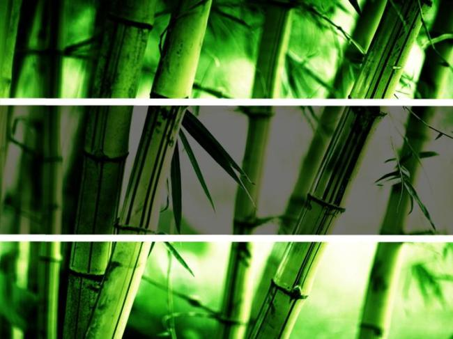 竹林手绘背景图