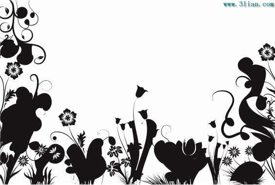 黑白植物花卉