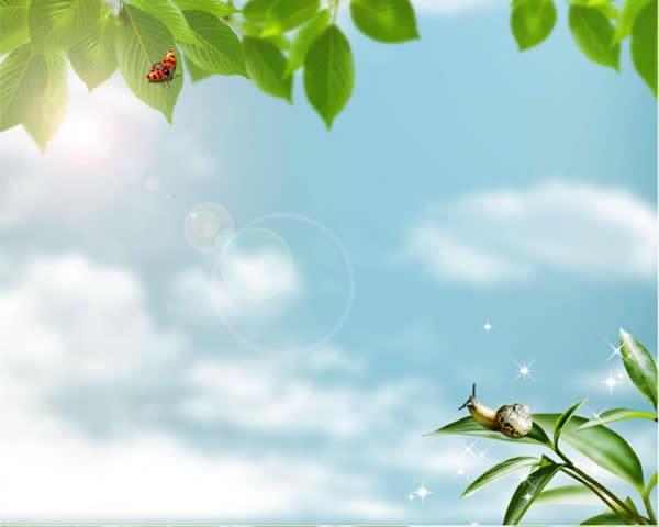 自然背景ppt模板