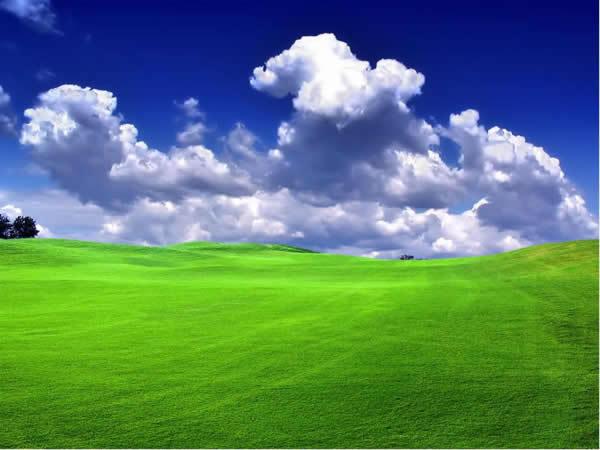 绿色草原风景ppt模板