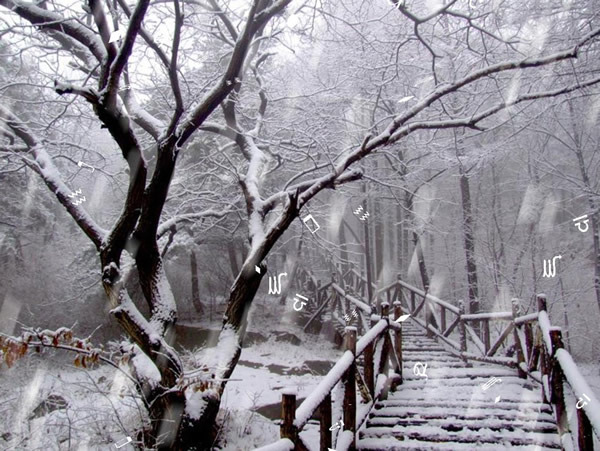 唯美雪景ppt模板免费下载