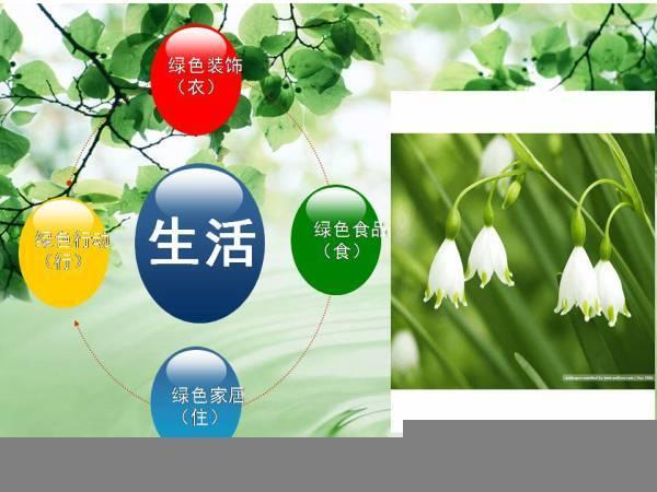 绿色食品ppt模板ppt模板免费下载-千图网www.58pic.com