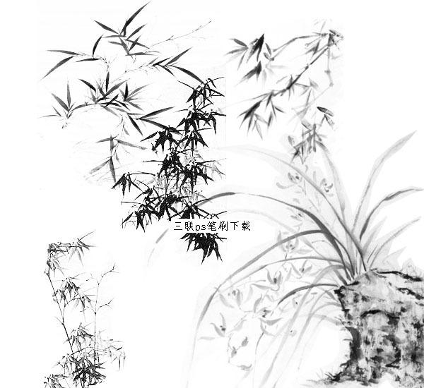 竹子手绘平面ps贴图