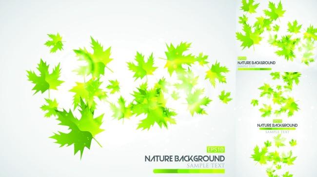 绿色叶子背景矢量图