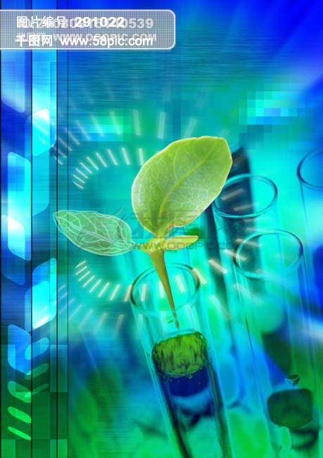 壁纸 动物 鱼 鱼类 459_650 竖版 竖屏 手机