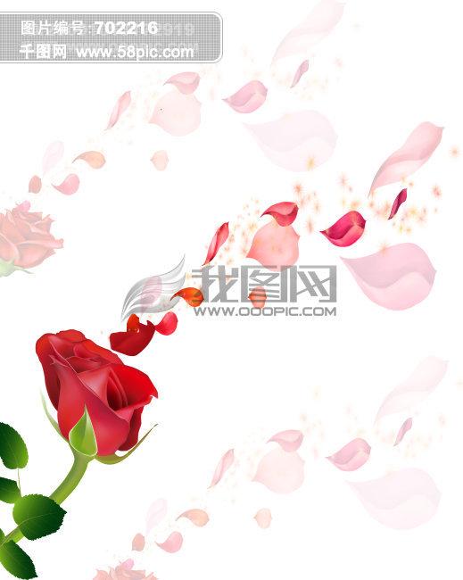 背景图片,花,花背景,素材
