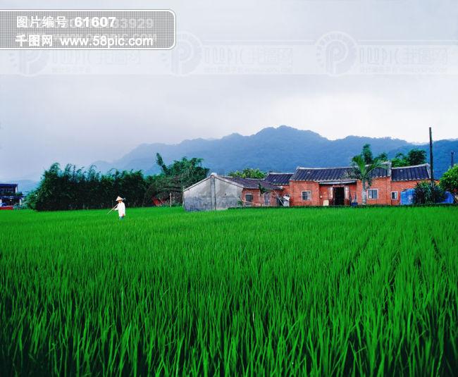农村图片素材免费下载 千图网www58piccom