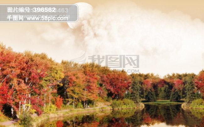 图片素材 风景|生活|旅游|餐饮 森林  森林免费下载 秋色枫叶红叶秋天图片