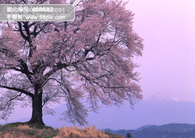 山水风景图片大全装饰素材免费下载-千图网ww