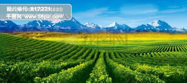 当前位置: 首页 最新素材 图片素材 风景|生活|旅游|餐饮 田园天空