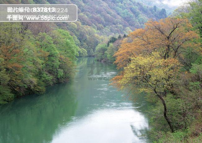 手绘板画河流树