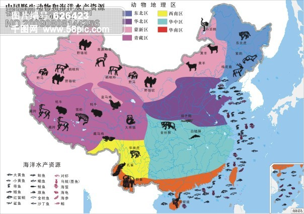 中国地图卡通版