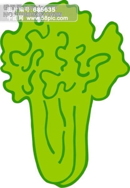 蔬菜卡通图白菜76