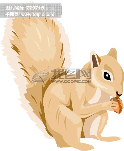 小松鼠 吃松子 矢量图
